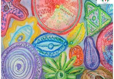 """Concurs de desene """"În lumea microbilor"""" (Galerie)"""
