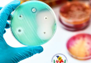 """Masă rotundă cu genericul ,,Să ne unim eforturile în combaterea rezistenței la antimicrobiene""""."""